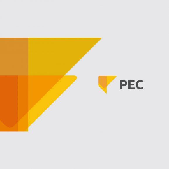 PEC – Programa de Estratégias Competitivas